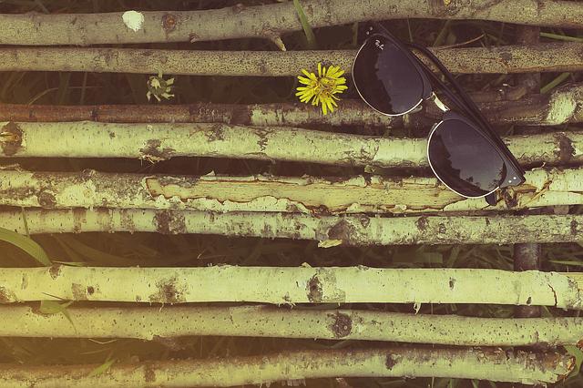 sunglasses-802001_640